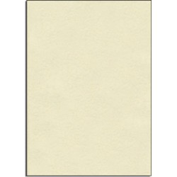 Pergamena neutra
