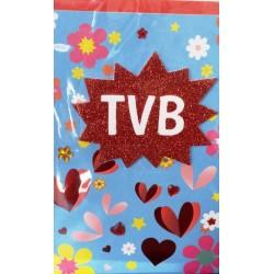 Biglietto TVB